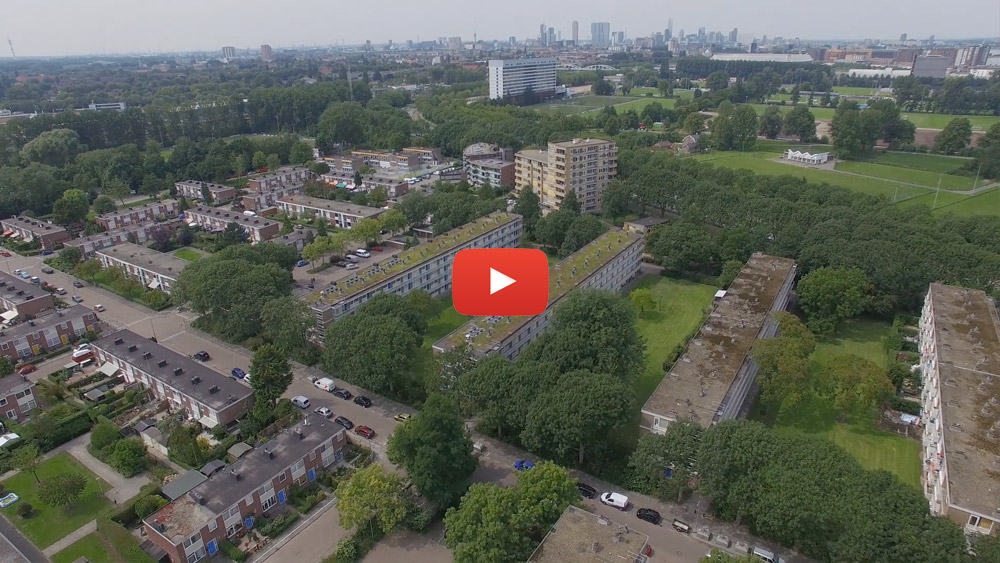 Rotterdam - Peitkreek