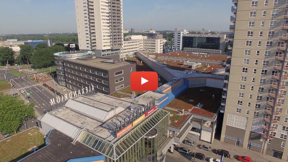 Rotterdam - Alexandrium